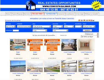Dise o de paginas web paginas web sectoriales empresa for Paginas web alquiler pisos
